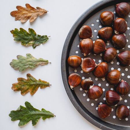 Top view of raw chestnuts with green and orange leaves on the side on a white background. Square format.