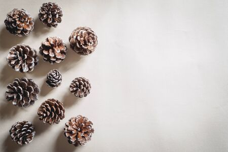 Landscape format banner with rows of pine cones on a white background. WinterChristmas concept. Stok Fotoğraf