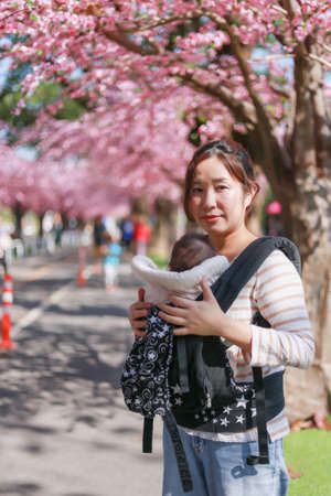A white Asian woman wearing a striped blouse with jeans Holding a child in a black boy bag standing on a pedestrian street In bloom season with Prunus trees and grass with copy space.