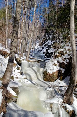 frozen creek: winter landscape frozen creek in the forest
