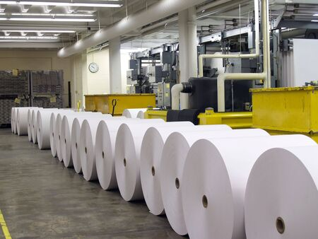 Paper rolls lined up waiting to be put on printing press