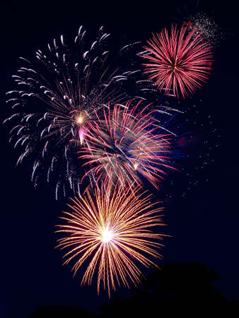Cluster of gold, pink, red, blue, white fireworks