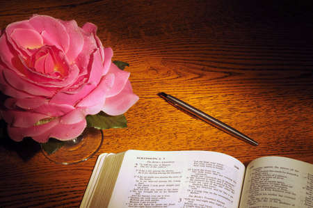 Bible open to Song of Solomon with pen and fabric rose Imagens