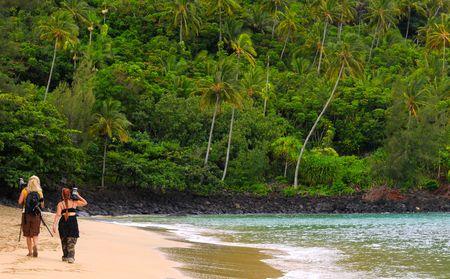Twee foto grafen een betekenis willen wijzen op een mooie Hawaiian strand