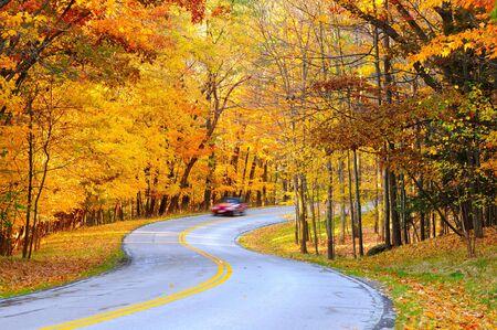 Een auto op Bochtige herfst forest weg, met bewegings vervaging van de snelheid