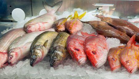 시장에서 얼음에 신선한 생선의 구색 스톡 콘텐츠
