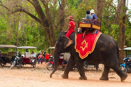 Siem Reap, Cambodja - 17 februari 2014 Elephant ritten zijn een populaire attractie voor toeristen in de Bayon tempel van Angkor Wat, in de buurt van Seam Reap, Cambodja