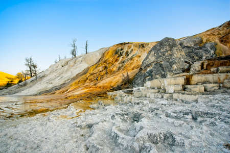 Palette Spring at Mammoth Hot Springs in Yellowstone National Park, featuring colorful runoff and mineral deposits