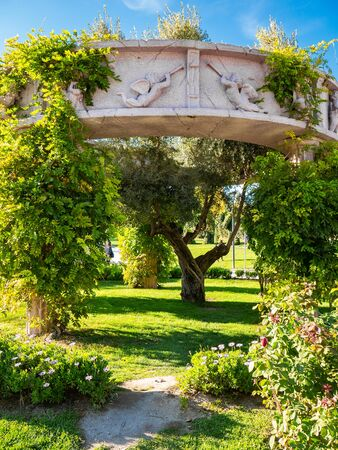 Beautiful garden with a circular stone pergola and Greek art details with climbing plants and an olive tree in the center