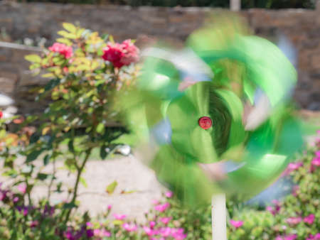 Greenish toy pinwheel creating a colorful trail from the movement caused by the wind in the center of a garden with colorful flowers in the background Banco de Imagens