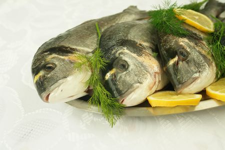 Uncooked fresh fishes