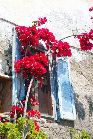 thira: Traditional window of Thira at Santorini island in Greece