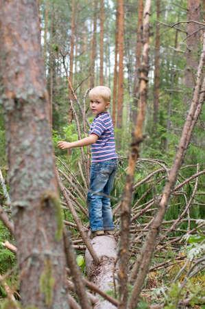 sneaks: Boy sneaks on a fallen tree trunk Stock Photo