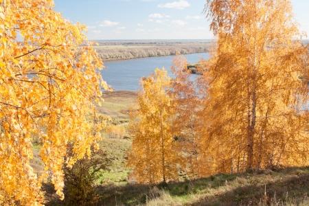 oka: Oka River. Autumn view from the high bank