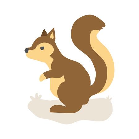 squirrel isolated: cartoon squirrel design