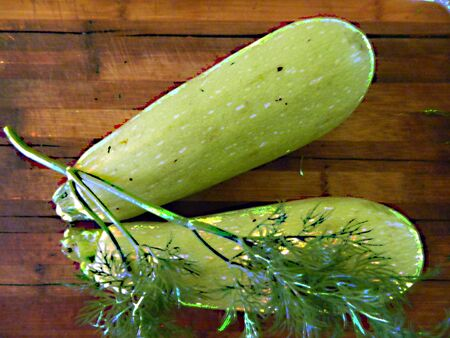 Two young fresh green zucchini are a branch of dill, liking vegetables