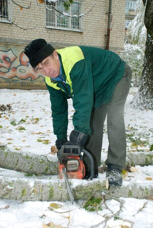 Man cuts the trees chainsaw Stock Photo - 19000383