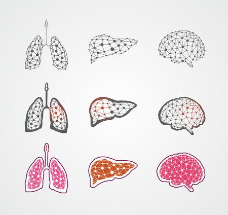 Human organs graphic elements. Vector icons set. EPS 8