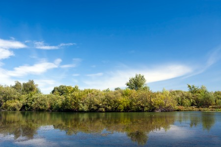 narew: Panoramic views of the river and the forest. Front view Stock Photo