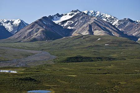 tundra: Denali National Park tundra and mountains.