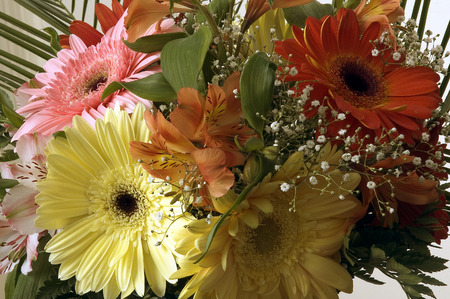 Colorful spring flowers, in various occasions, e.g.: mothers day, international womens day, Valentines day, birthday, remembrance day, teachers day, graudation ceremony, visit.