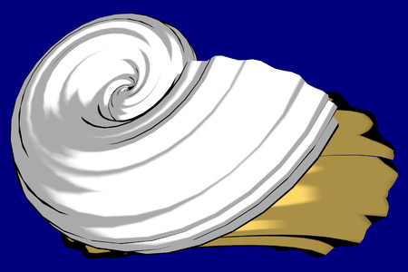 3d: Snails. 3D Computer Graphics.