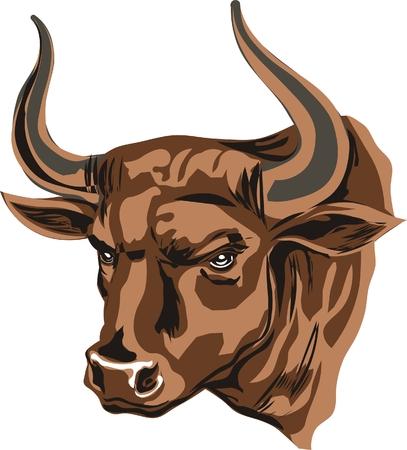 brown buffalo with big horns Stock Photo