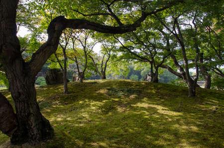 okayama: Okayama Korakuen Garden, Japan Stock Photo