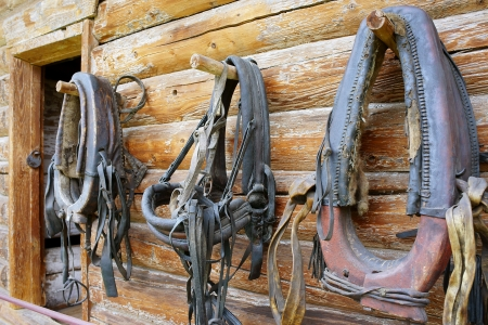 horse collar: Horse collars hanging on wall of a timbered home