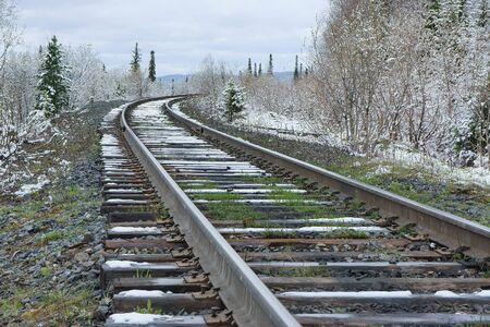 forest railroad: Railroad amongst snowy forest. Stock Photo