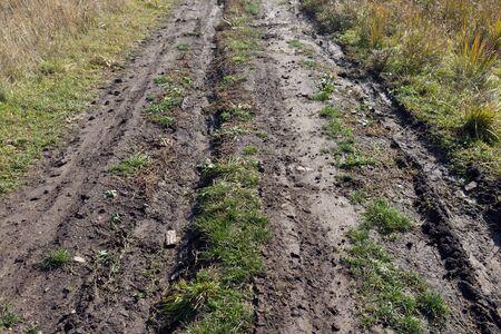 Rural dirt road, wet after rain.