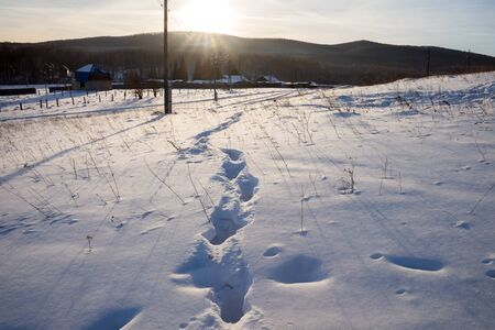 Traces of a man in a winter snowy glade against the background of rural houses and forests.