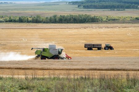 Combined harvester and tractor-trailer rides on the field during harvesting.