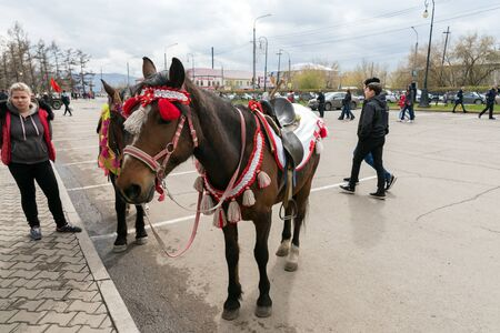 An elegant horse stands in the town square waiting for those who want to ride it, during the celebration of Victory Day WWII. Krasnoyarsk. Russia. Redactioneel
