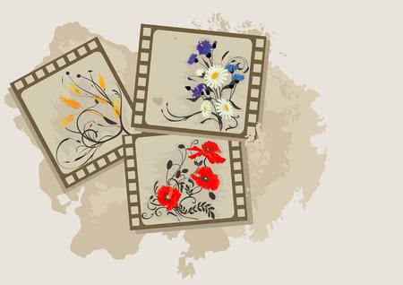 Summer flowers photos vintage. Stock Vector - 3215030