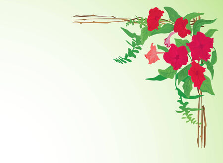 Background with red flowers, leaves and frame.  Vector