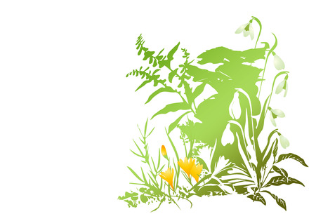 Yellow spring  grunge flowers. Vector