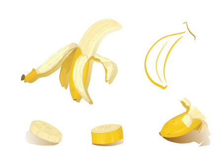 Fruits of banana - isolated pieces vector illustration.   Illustration