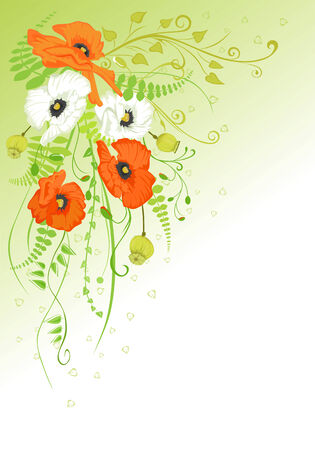 Abstract background with white and orange poppies.