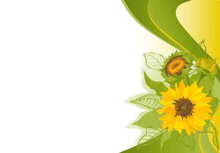 green swirl: Abstract background with sunflowers.