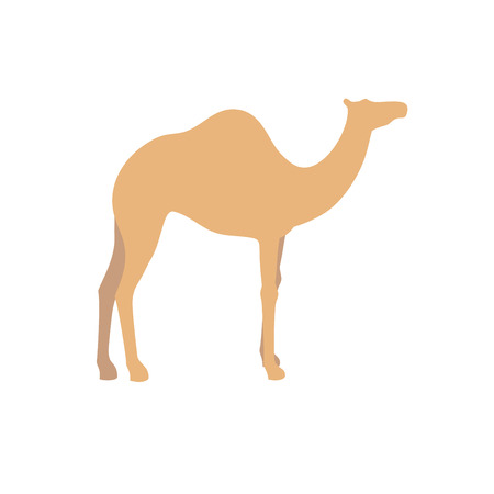 Camel vector sign illustration. Illustration