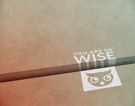 wayout: Modern layout with owl saying you are wise Stock Photo
