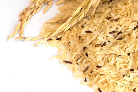 Gaba Rice Background, Germinated brown rice, medicinal properties, Thai Rice. Imagens