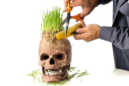 unfavorable: Grow green wheat seedling on head of skull, Skull in Barber shop