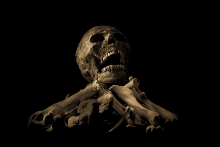skull and bone on black cloth background, Still Life style, selective focus, Adjustment color for background