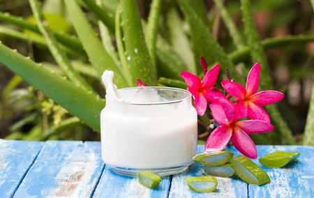 スプラッシュ モーション ブラーのミルクでアロエベラの新鮮なドロップ、古い木材とぼかしアロエベラ植物の背景 写真素材