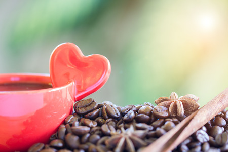 Close up of coffee beans, red cup with heart shape of hand held, star anise and cinnamon on nature background, selective focus.