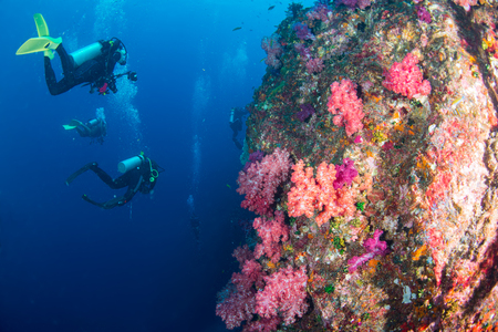 Wonderful and beautiful underwater world with scuba diving and ccoral reef landscape background in the deep blue ocean with colorful fish and marine life