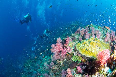 カラフルな魚や海洋生物と深い青い海のサンゴ礁の風景の背景と素晴らしいと美しい水中世界 写真素材 - 91893995