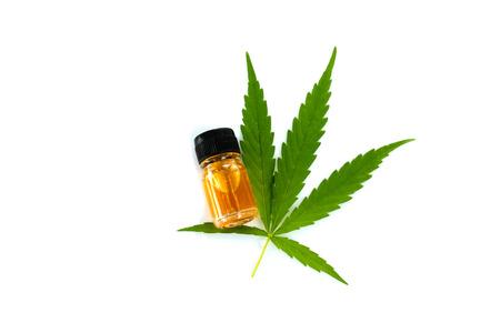 marijuana green leaf, cannabis CSB oil hemp extracts in jars